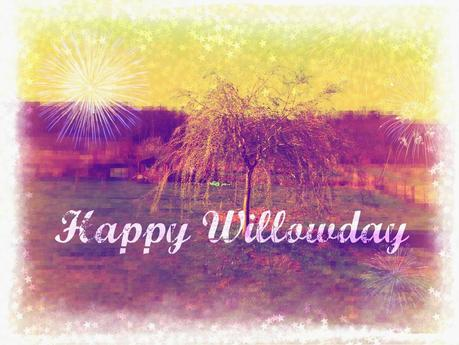 Happy Willowday !