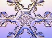neige rend-il plus intéressant