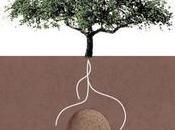 transforment défunts arbres avec capsule funéraire
