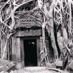 ON A TESTE: E-TV en direct du Cambodge!