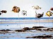 Exposition PUTCH beach sculpteur Bazacle