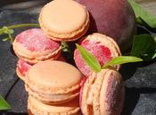 Mars 2015, journée internationale macarons