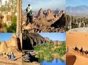 mars Alger Journées marketing touristique