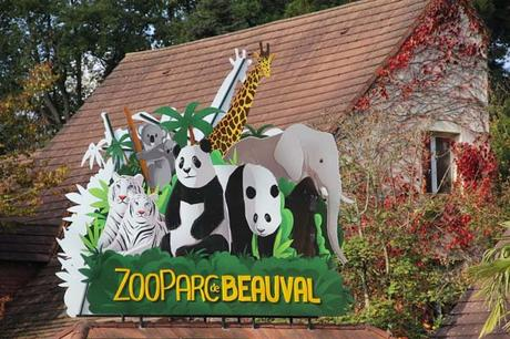 zoo_beauval