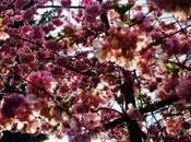 Look jour: comme printemps...par charley