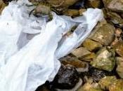 Pollution pétition contre sacs plastiques jetables Rochelle