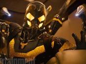 News Nouvelle photographie pour «Ant-Man»