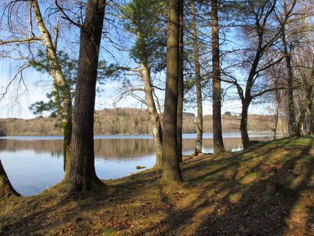 Souvenirs de l'Yonne et des contrées limitrophes