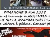 Retrouvez chiens galgos Argentan dans l'Orne (61).