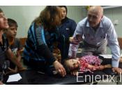 Syrie Etats-Unis démentent pertes civiles imputées coalition contre l'EI