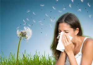 Allergie quercetine