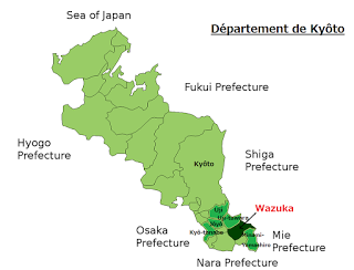 Sencha Tsuyu-hikari de Wazuka