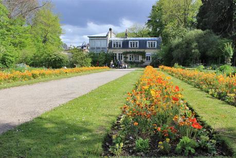 le beau jardin des plantes et botanique de caen - Jardin Des Plantes Caen