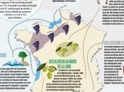 Avec quelques degrés plus, l'Océan Bordeaux