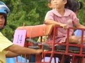 Thaïlande, éléphants déposent leur nacelles [HD]