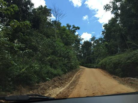 On the road in Kalimantan Timur
