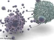 Curcumine curcuma contre cancer