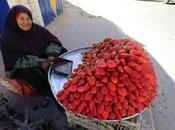 fraises trottoir Gaza