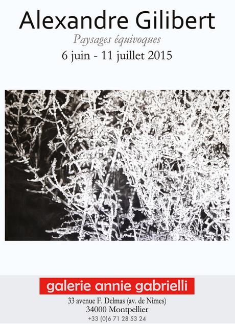 Exposition Alexandre Gilibert à la Galerie Annie Gabrielli