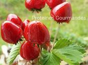 bouquet d'amour… fraises