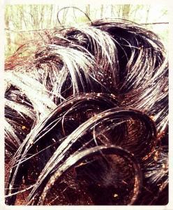Masque lavant pour les cheveux