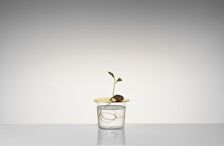 Floating-Forest-Series-by-Michael-Anastassiades-04