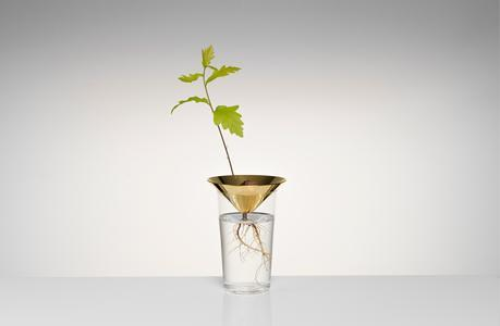 Floating-Forest-Series-by-Michael-Anastassiades-03