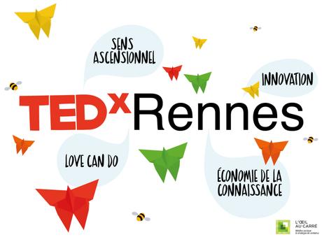 TEDx Rennes 2015 Œil au Carré
