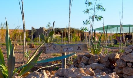 J'ai testé une ferme pédagogique et écologique – Akkalino