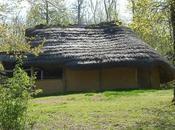 Maison gauloise