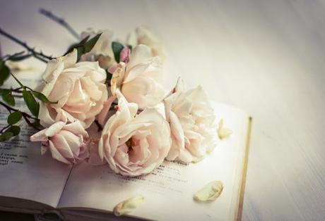 Peonies on an old book image