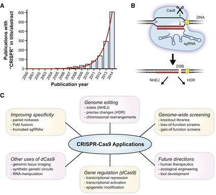Applications   CRISPR