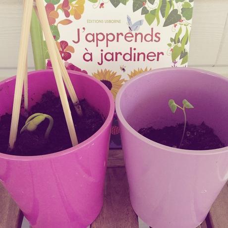 Initiation au jardinage avec