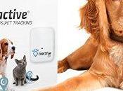 meilleurs pour chien compatible iPhone