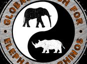 Marche pour éléphants rhinocéros 2015