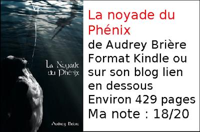 La noyade du phénix d'Audrey Brière