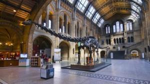 Musée d'histoire naturelle - LondresPlan d'une journée à Londres