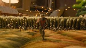 ant-man-ants-battle-ant-man-marvel-studios