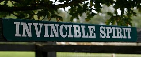 Invincible Spirit