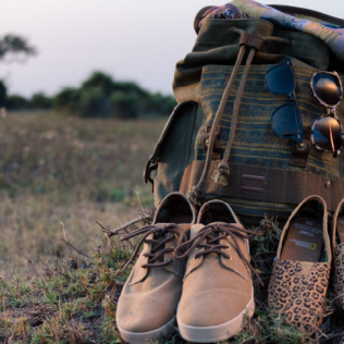Mode/Evènement  : La Collection Big Cats par TOMS et National Geographic