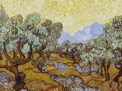 Huile d'olive prix, pourquoi l'éviter