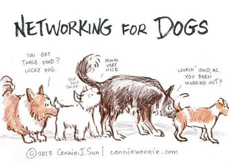 drawing networking for dogs w500