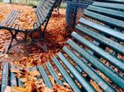 Charme poésie d'un automne Paris