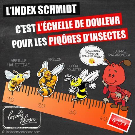 L'index Schmidt : l'ĂŠchelle de douleur des piqĂťres d'insectes