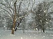 Neige Noël