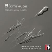 Buxtehude Rosso Porpora