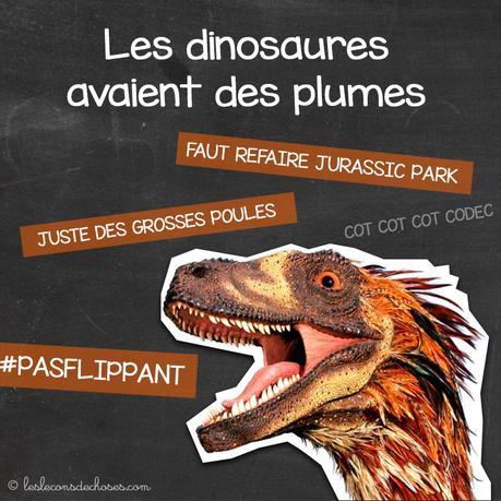 dinosaures plumes ancĂŞtres oiseaux