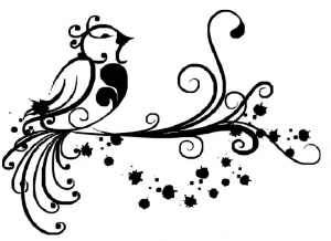 Oiseau-lyre