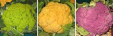 le chou-fleur à la béchamel