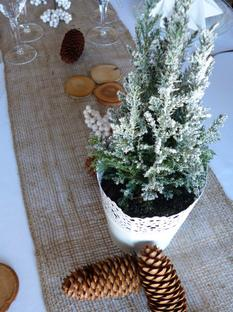 Table hivernale